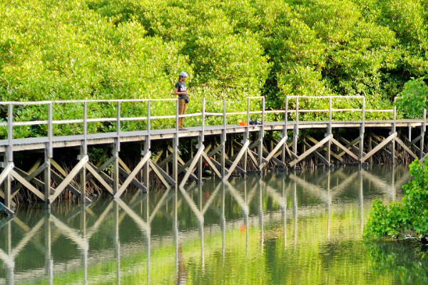 Sanur Cheap Accommodation, Sanur Cheap Hostels, Sanur Cheap Motels, Sanur Cheap Hotel, Holiday in Sanur, Sanur Package Deals, Sanur Family Accommodation, Family Accommodation Sanur, The Bali Bubble, Cheap Accommodation Sanur, Cheap Hotel Sanur, Family Friendly Accommodation Sanur, Affordable Accommodation Sanur, Hotel Sanur, Motel Sanur, The Bali Bubble, Luxury Accommodation Sanur, Bali Accommodation, Bali hotel, Sanur Hotel